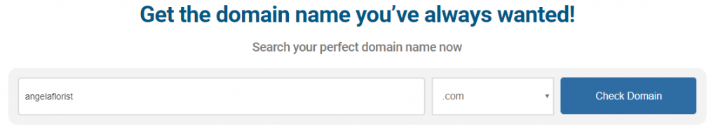 domain-search